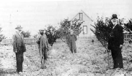 Photo of Gottleb 